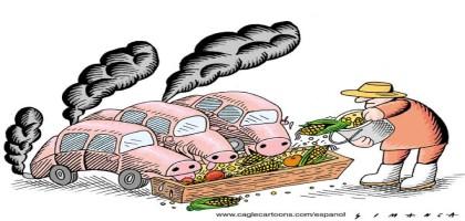 Agrocarburants industriels : pas de nourriture dans nos voitures