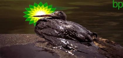 BP verse 8 milliards de dollars aux victimes de la marée noire