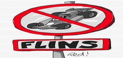 fin-flins-f1