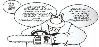 le_chat_ecologique