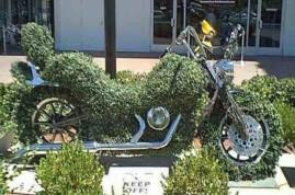 motocyclisme-ecologie